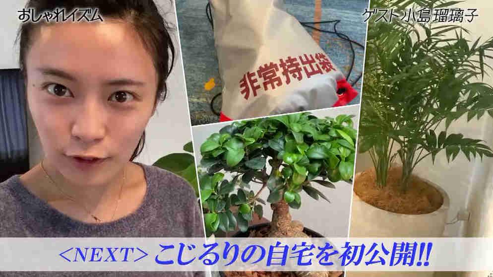 小島瑠璃子の自宅画像は?観葉植物とうさぎ暮らし!【おしゃれイズム】