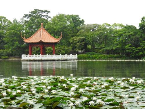 大阪の公園の池で溺死事故に見せかけた殺人事件を見破った監察医巽信二【アンビリバボー】