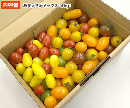 あまえぎみ通販情報!愛知県豊橋市のカラフルミニトマト!品種や甘さは?【青空レストラン】